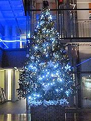 写真:クリスマスツリー2